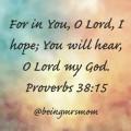 Prov 38:15