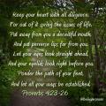 Proverbs 4:23-26